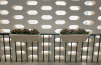 綠化梯間走廊